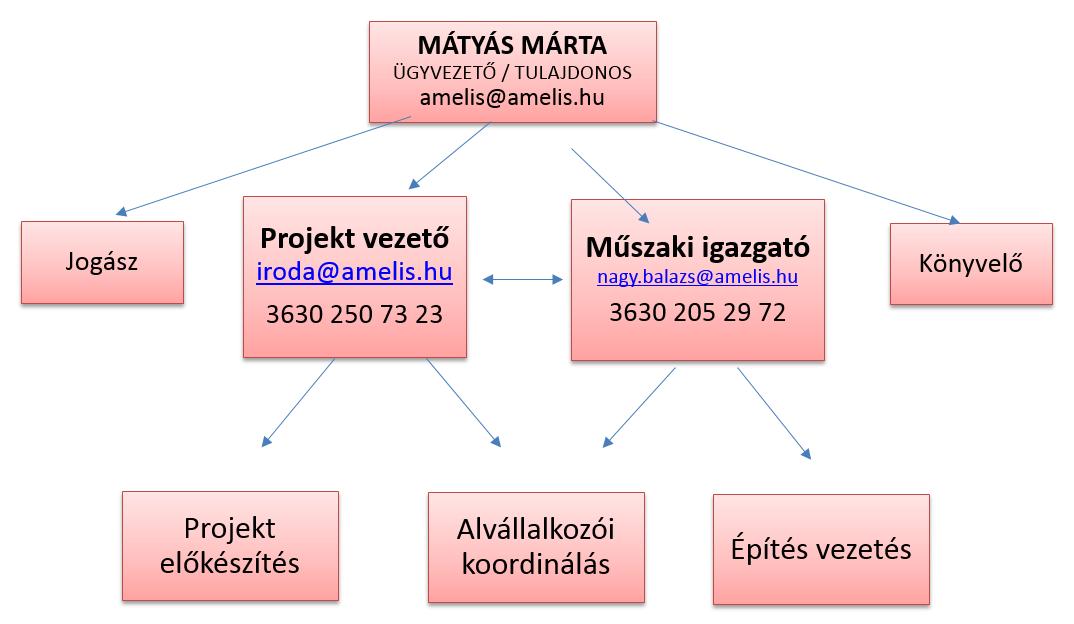 amelis-szervezeti-felepites